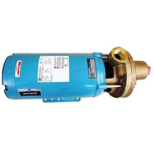 Pump with Motor Assembly Varian Part 10001599302